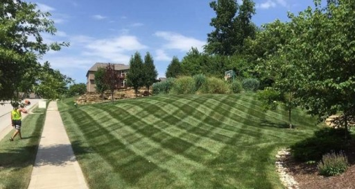 Lawn Care & Mowing