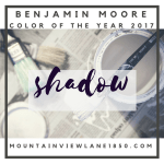 Benjamin Moore Color of the Year 2017 Shadow | featured at Mountain View Lane blog