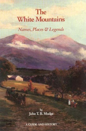 Image result for the white mountains book
