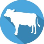 Dairy Supplies & Dairy Equipment | Mountain West Dairy Services