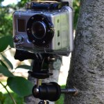 Mounting a Camera to a Tree