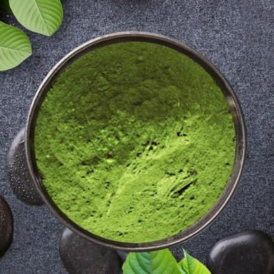 green hulu kapuas 600x600
