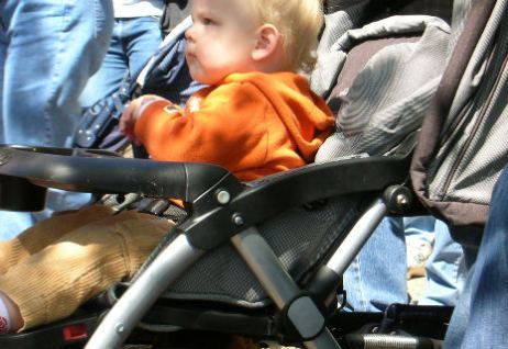 stroller rental and tips at Walt and Disney World