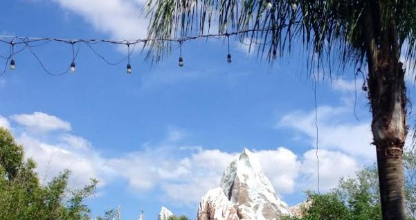 Expedition Everest www.mouseterplanner.com