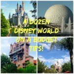 A Dozen Ways To Do Disney World On A Budget