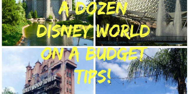 A Dozen Tips for Disney World on a budget!