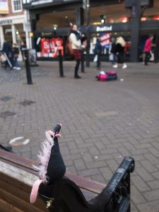 Fury sits on a bench looking at a busker on bagpipes