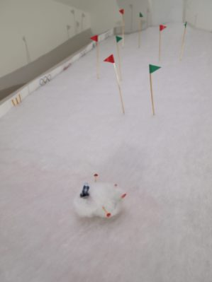 Microvaark collects more snow as he rolls
