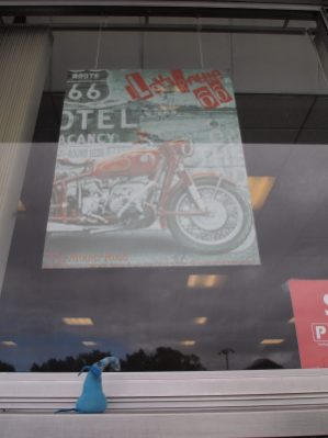 Arnold looks at a poster in a window with a motorbike and a Route 66 sign