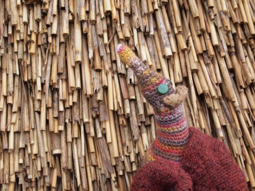 Esther admires the texture of the thatched roof