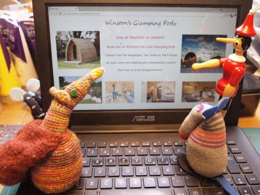Winston hides behind the laptop and watches as vaarks look at his website advertising glamping pods for Vaarklife