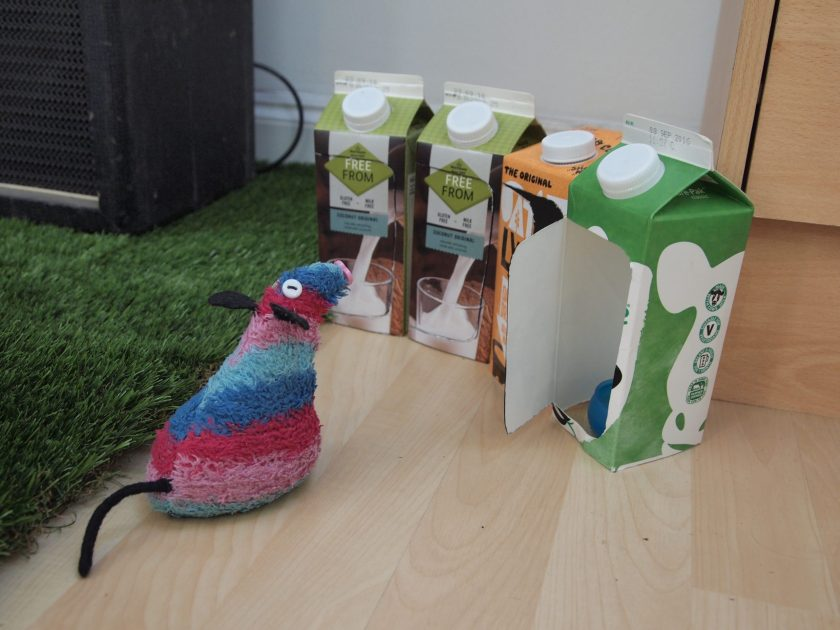 Ratvaark looks at the portaloos, which are cut down milk cartons