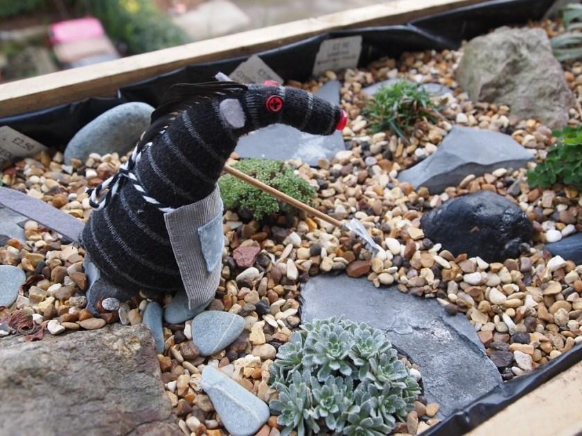 Bernard is raking gravel in a window box rock garden