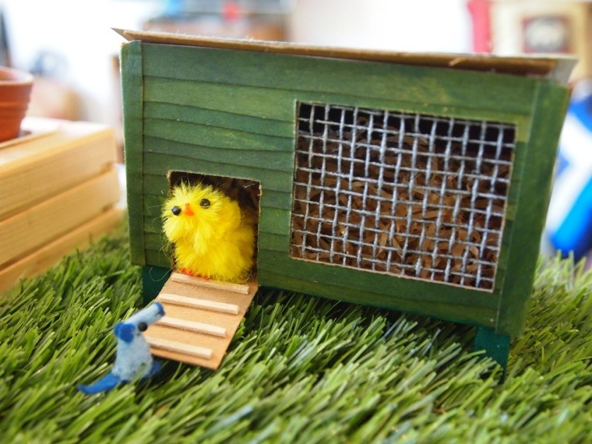 nano talks to the chick in its coop