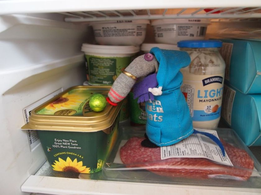 (Dim, in hoodie and scarf, looks at an egg in the fridge