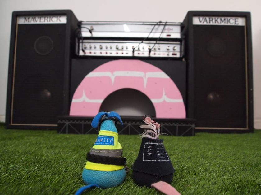 Arnold and Fury gaze at the stage, which is shaped like half a giant Party Ring biscuit, flanked by huge speakers