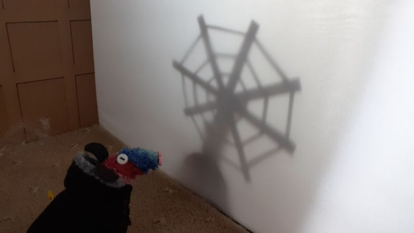 Ratvaark looks at the shadow of a giant spider web