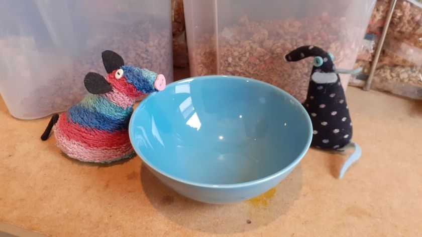 They look at a small bowl with tubs of cereal in the background