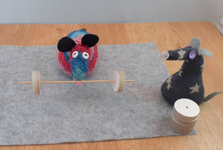 ratvaark tucks his snozzle under the bar, with one weight on each end