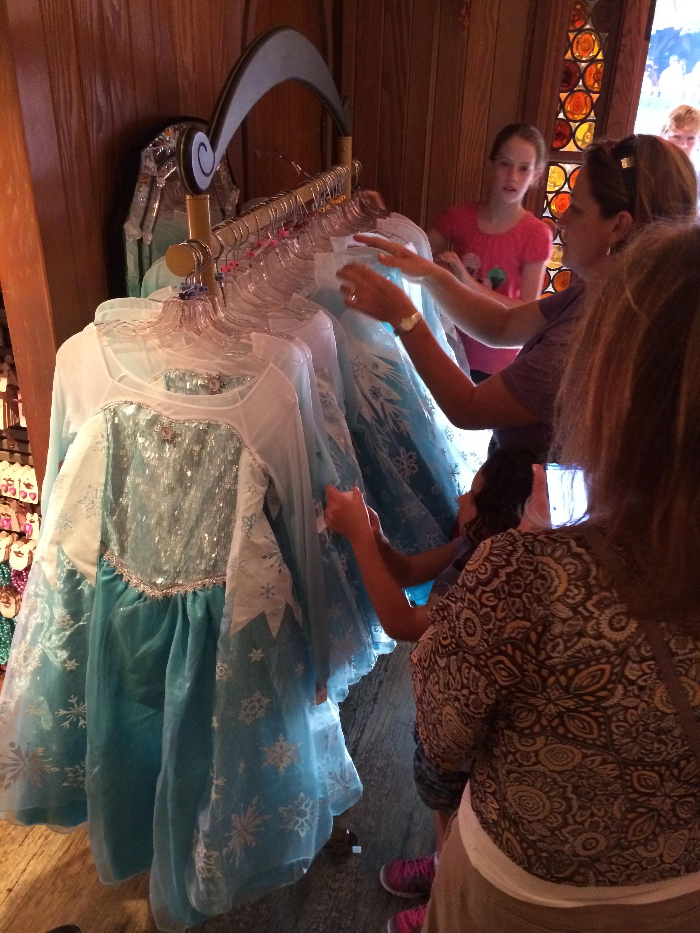 Live Elsa Dresses In Stock At Bippity Boppity