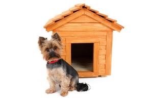 niche pour chien pas cher fabrication