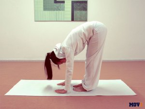 Flexión de cadera de pie (Uttanasana)
