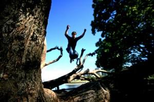 Persona saltando entre árbol caído.