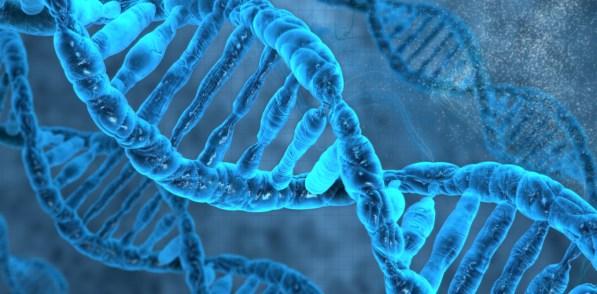 spiral human DNA