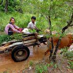 Kuay couple in Cambodia
