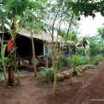 O Soam Community Homestay