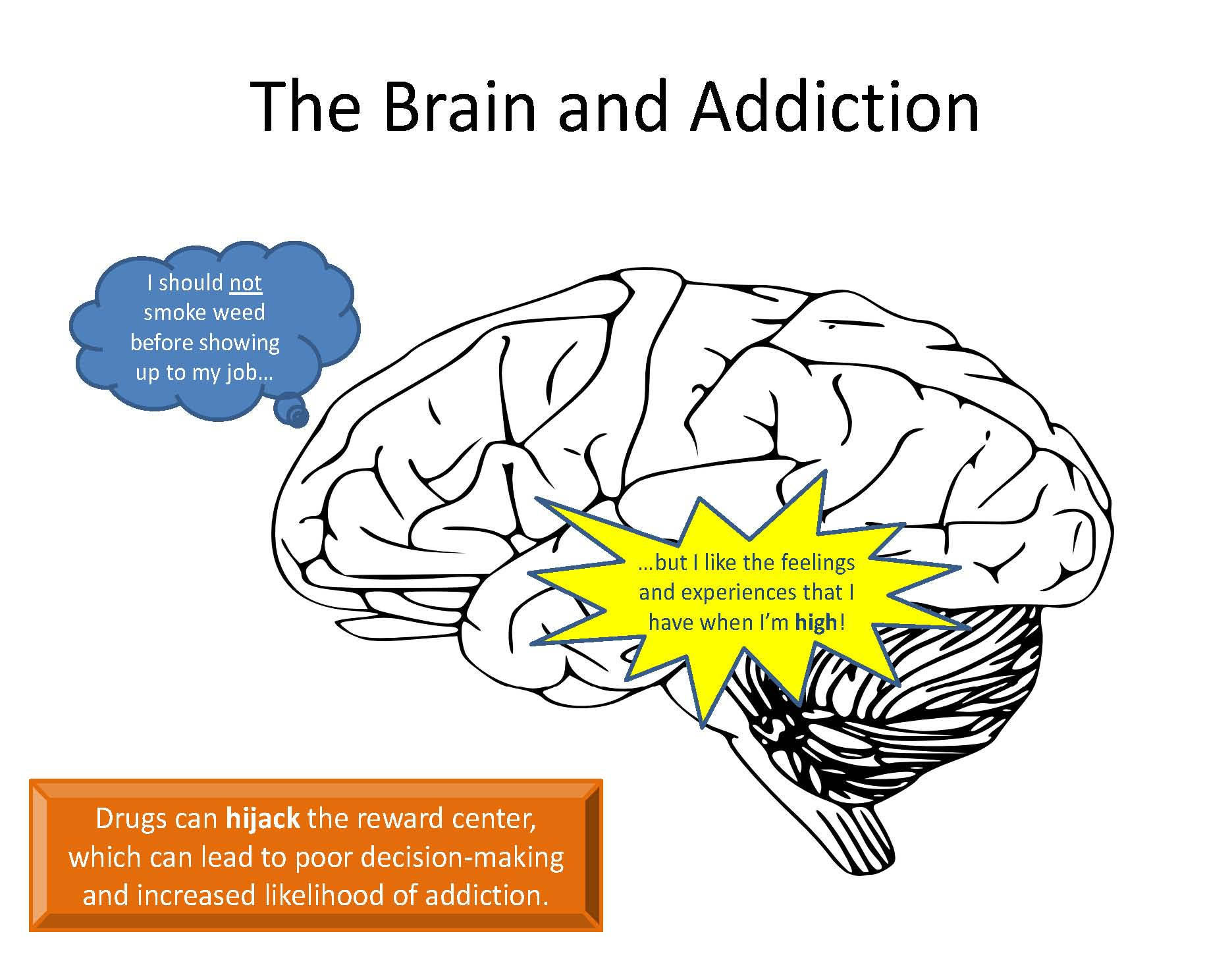 The Brain And Addiction Moveup
