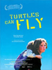 Turtles-Can-Fly