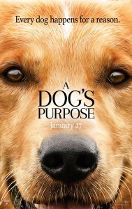 A Dogs Purpose movie review