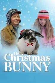 กระต่ายน้อยเพื่อนเลิฟ The Christmas Bunny (2010)