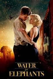 มายารัก ละครสัตว์ Water for Elephants (2011)