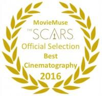 Nominees: Bridge of Spies, Carol, The Revenant, Sicario, Mad Max Fury Road, The Hateful Eight.
