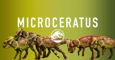 jurassic-world-microceratus-share
