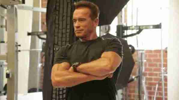 arnold_schwarzenegger_october_2013_muscle_fitness