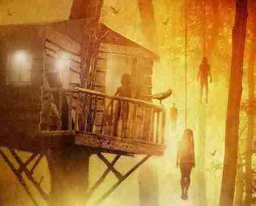 treehouse-review-dvd