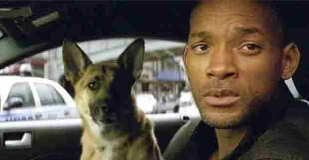 will-smith-focus