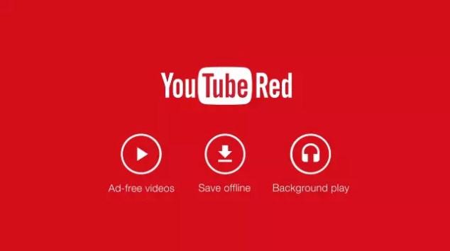 youtube red logo rojo y blanco
