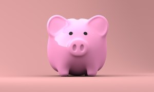 A pink piggy bank to dig into when renting a storage container.