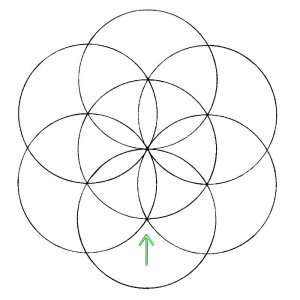 dibujando la flor de la vida
