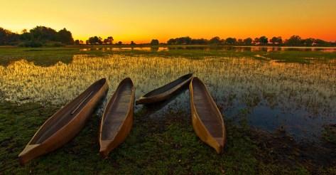 Canoe Okavago Delta