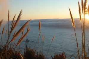 Image of the pacific coast at sunset