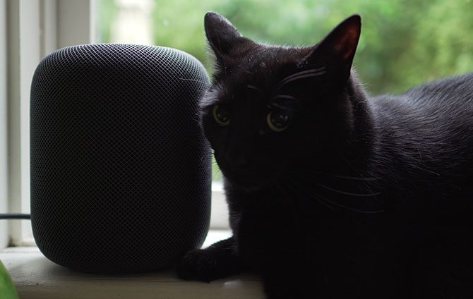 HomePod avec Black Cat