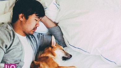 Photo of Cette routine nocturne vous aidera à dormir comme un bébé