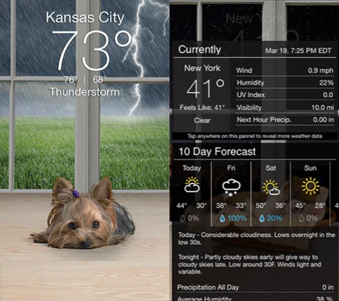 nützliche Wetter-Apps überprüfen jeden Tag