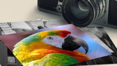 Photo of 5 conseils pour vous aider à prendre des photos vraiment uniques