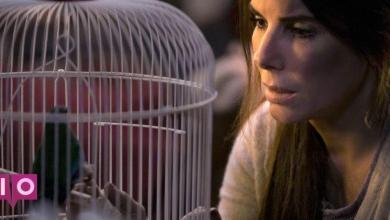 Photo of Netflix accepte enfin de retirer les images réelles de déraillement de train de Bird Box
